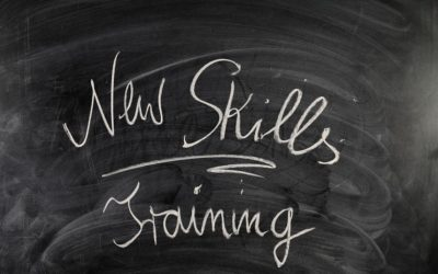 Back to School: Training Programs vs. Apprenticeships