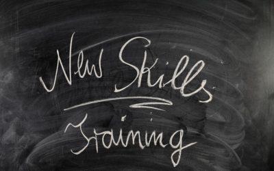 Back to School: Training Programs vs. Apprenticeships